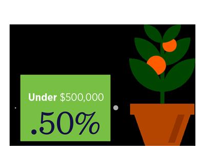 Under $500,000 Pricing